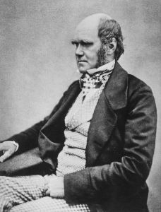 Portrait photograph of Darwin, probably taken in 1854 when he was 45 years old