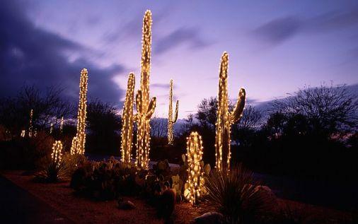 Festive Cactus Nail Art