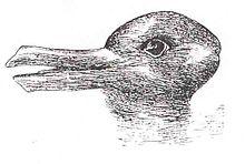220px-Duck-Rabbit_illusion