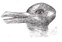 220px-Duck-Rabbit_illusion