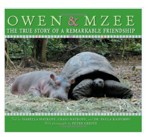 owen-and-mzee-cover-17tqsdp
