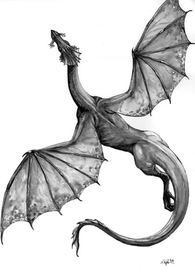 One of several renditions of Temeraire on the wiki at http://naominovik.com/wiki/Temeraire