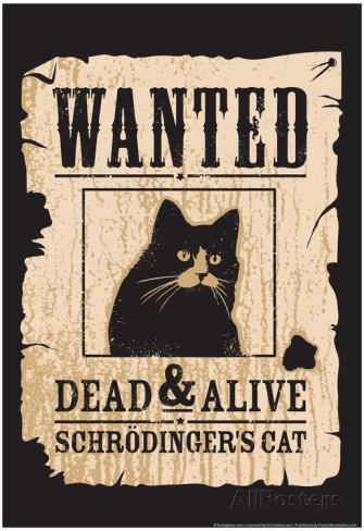 snorg-tees-schrodinger-s-cat